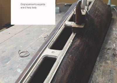 erard-harp-espalda