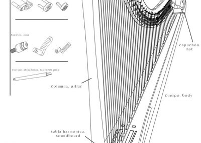 general-view-pedal-harp