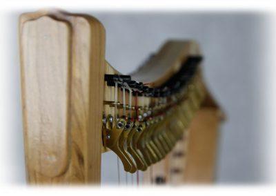 papiro-22-strings-nogal-5