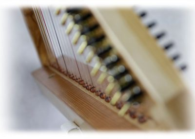 papiro-22-strings-nogal-7