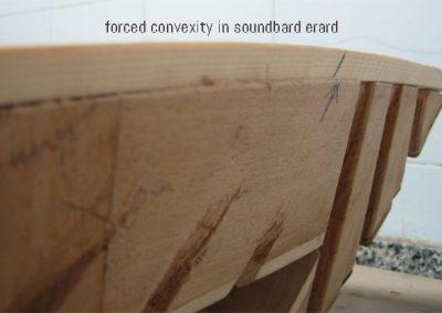 forced-erard-soundboard-convexity